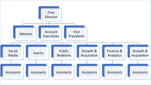 A chart outlining a Student-run Firm structure, with Firm Director at the top, followed by Account Executives and Vice Presidents, then Department Heads, then Assistants.