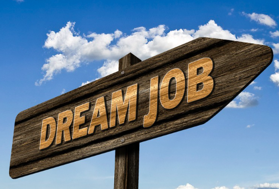 Tips for Acing the Job Search