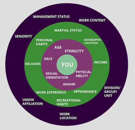 Utilizing the Diversity Wheel for Personal and Professional Development
